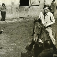 Auctioneer with man on horse, Horse Auction, NYC, 1947