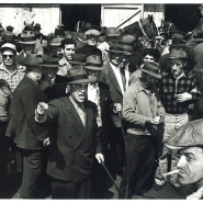 horseauction-bymorrisengel-auctioneer